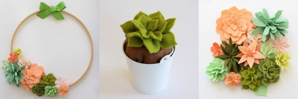 Coco Flowers and Succulents - ideas for extra projects from Molly and Mama